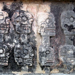 A part of the sculpture adorning the &#039;Skull Rack&#039;, a tradition imported by the Toltec that probably really impressed the invading Spanish. <a href=></a>