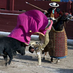 A torrero comes face to face with el toro at the Plaza de Toros bullring in Merida. <a href=></a>