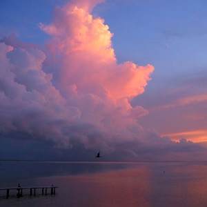 A sunset over the Gulf of Mexico. <a href=></a>