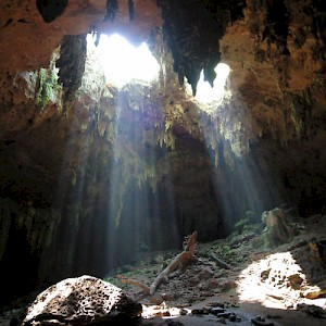 A view from inside a cenote without water, part of the Loltun cave system. <a href=></a>