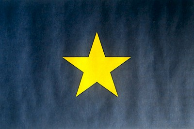 First official flag of the Republic of Texas (1836-1839) <a href=></a>