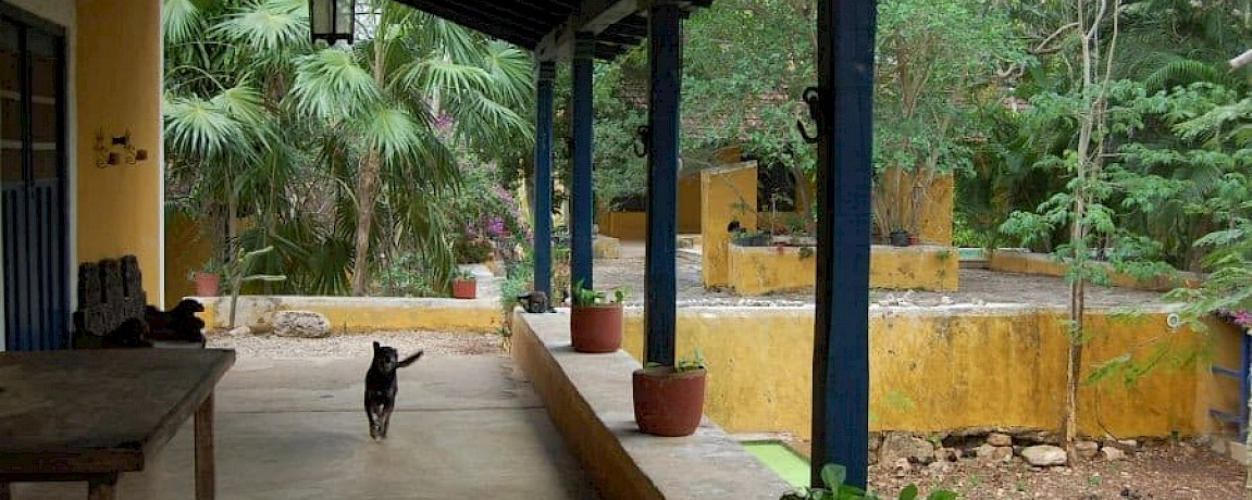 HACIENDA MASUL - RESTORED AND CLOSE TO MERIDA! (TY)