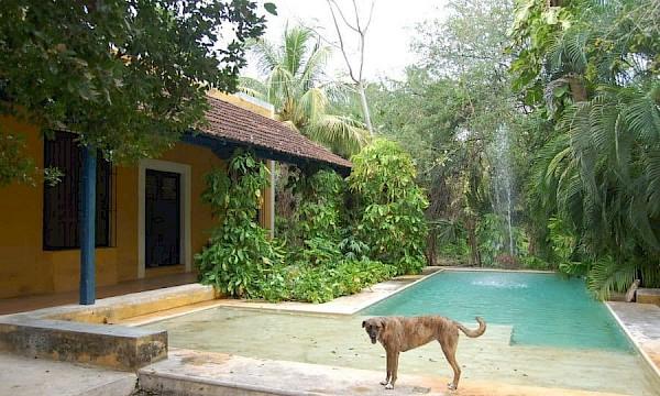 Homes for Sale in Yucatan | Yucatan Living