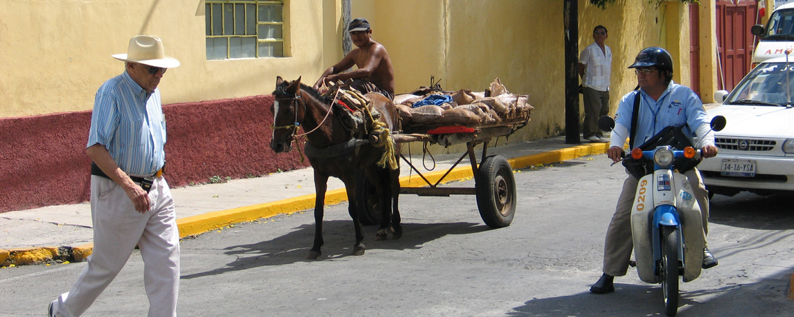 Grocery Shopping in Merida