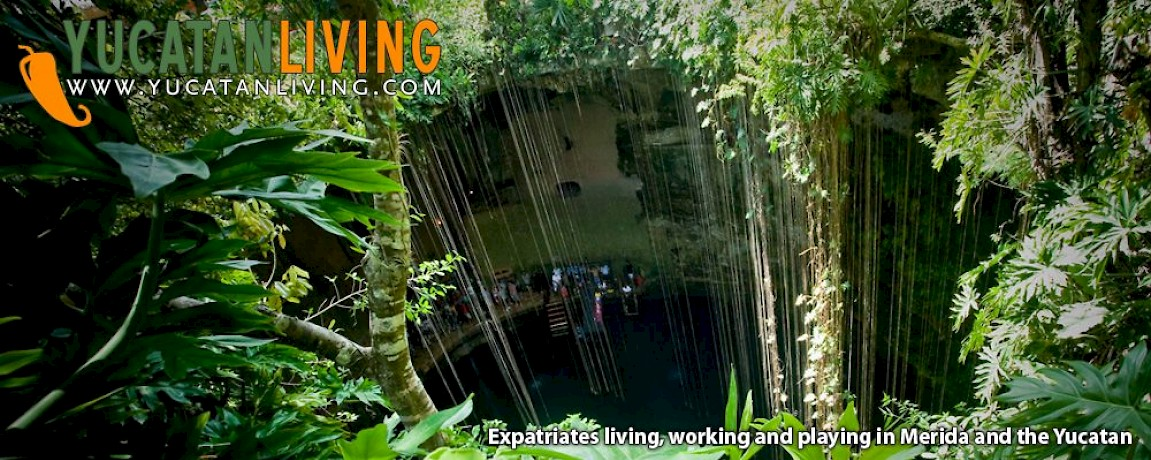 Red Bull Cenote Cliff Diving | Yucatan Living