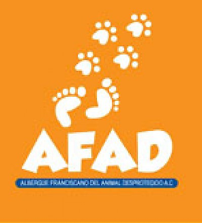 AFAD Animal Shelter in Merida <a href=></a>