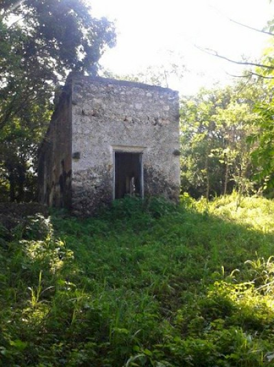 Old hacienda building on the property in Uayma <a href=></a>