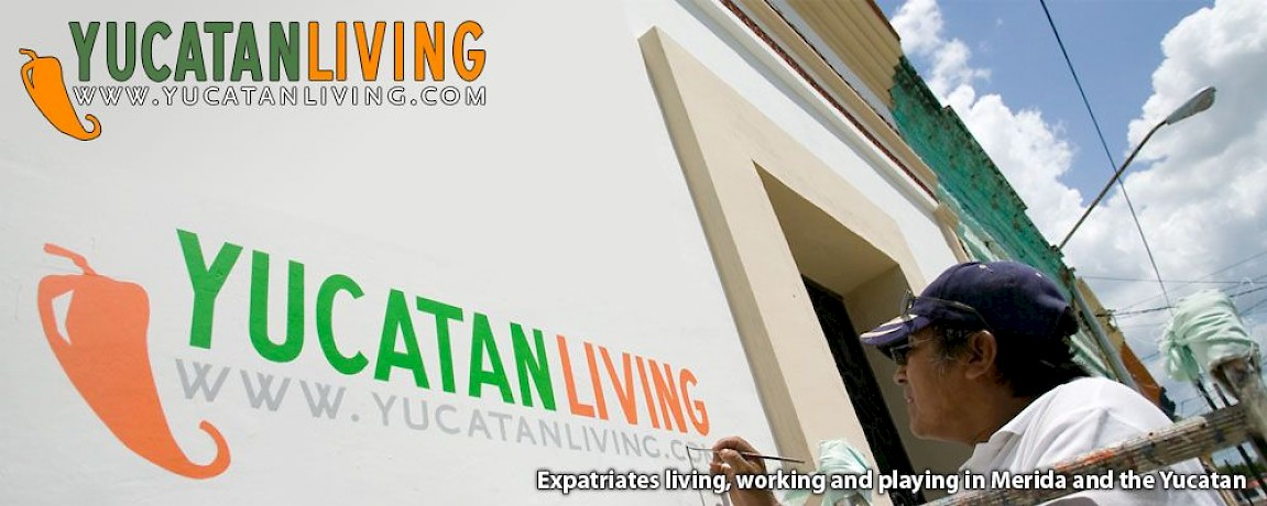 What's New at Yucatan Living